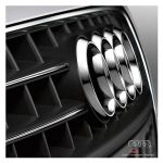 Modanatura cromata per calandra - Audi A4 8K