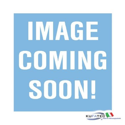 """Ricezione TV """"Hybrid"""" - Replacement - Audi A6 4F Q7 4L A8 4E con MMI 2G High e TV receiver analogico"""